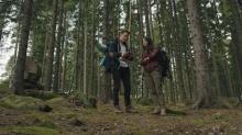redwood-still